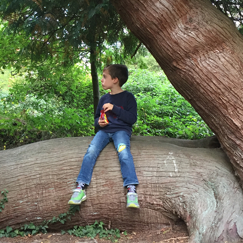 child sitting on a tree trunk